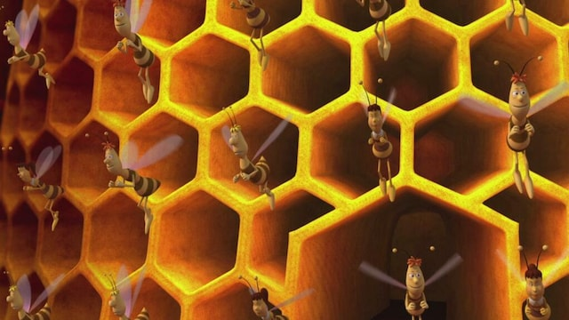 19. Mehiläistäit