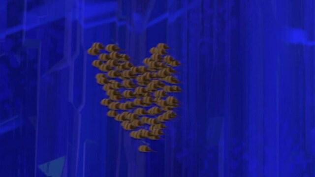20. Pollinian korvissa soi