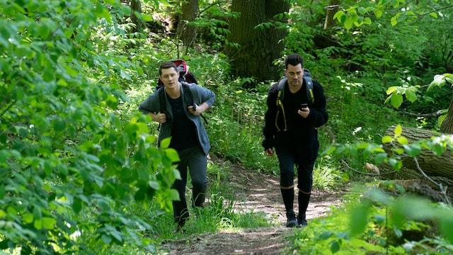 13. The Hike