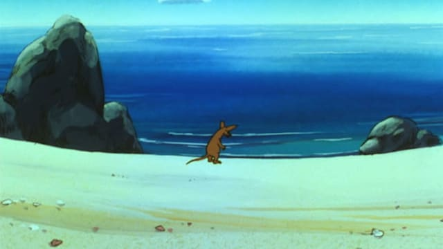 3. Hylky rannalla