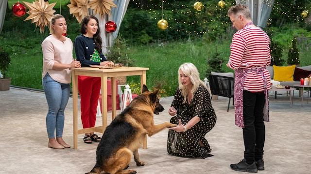Koko Suomi leipoo, Jakso 5: Kun joulu on!