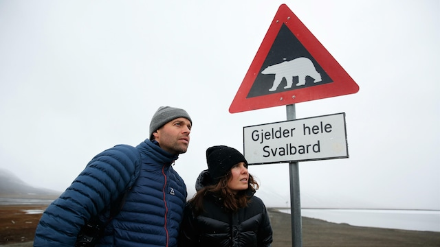 5. Jääkarhu