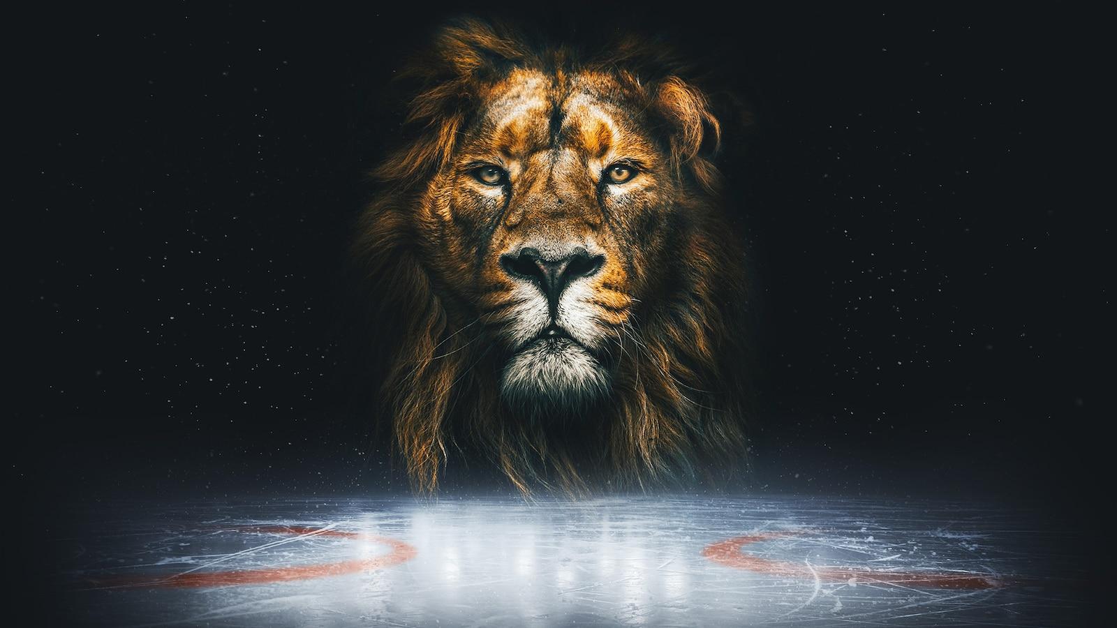 Jääkiekon MM 2021