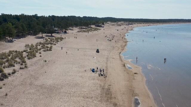 SuomiAreena, Kilometrejä pitkä Yyterin ranta on Porin tunnetuin nähtävyys – nyt siitä halutaan ympärivuotinen matkailukohde
