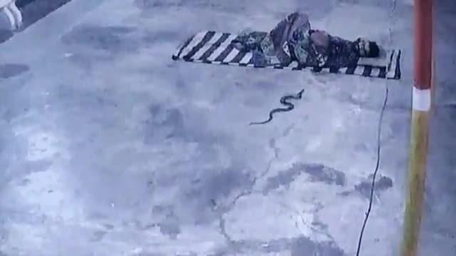 KameraOne, Tämä video on piinaavaa katsottavaa: Käärme luikerteli nukkuvan miehen peiton alle Intiassa – katso molempien reaktio!