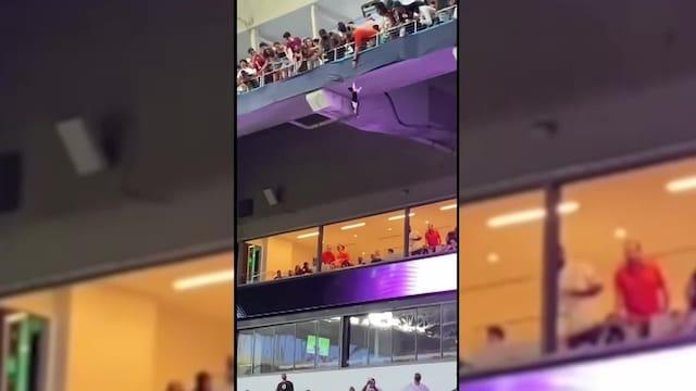 Lifestyle, Dramaattinen video: Kissan hurja pudotus jalkapallostadionilla kohahdutti katsomossa