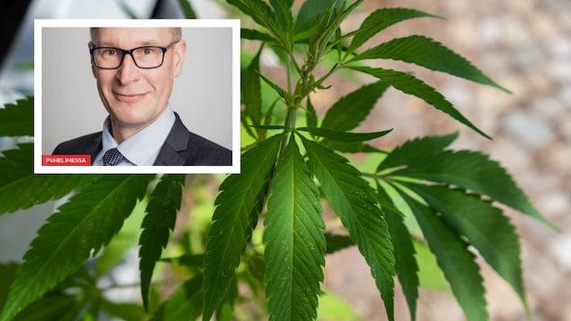 Uutisaamu, Kannabis puhuttaa – miksi marginaaliset teemat jyräävät laajempia?