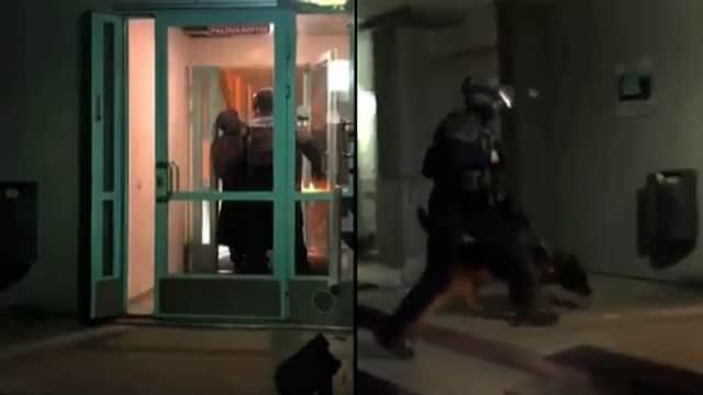 Uutisklipit, Ilmoitus asemiehestä aiheutti ison poliisioperaation Herttoniemenrannassa