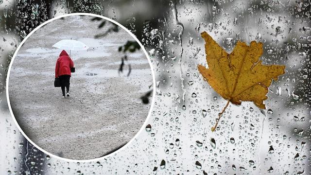 MTV Uutiset Live, Säätilassa selkeä muutos – sateet alkavat loppuviikosta