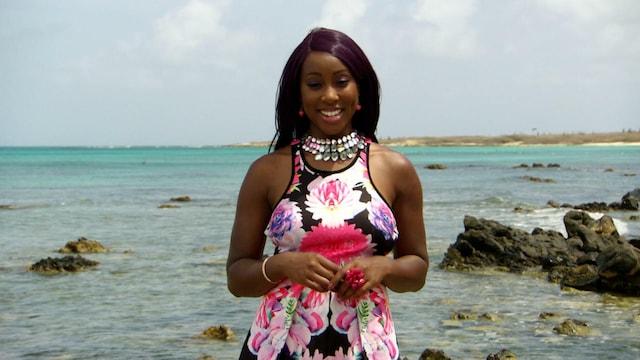 Unelma-asunto auringon alta, Jakso 2: Grenada