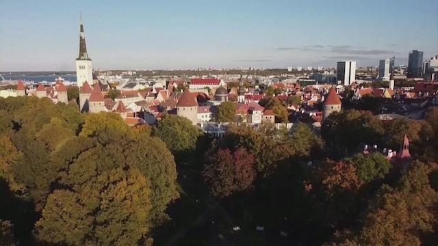 MTV Uutiset Live, Virossa todettiin tänään 1129 uutta koronatartuntaa - Tallinnassa jo paljon suomalaisia syyslomailijoita