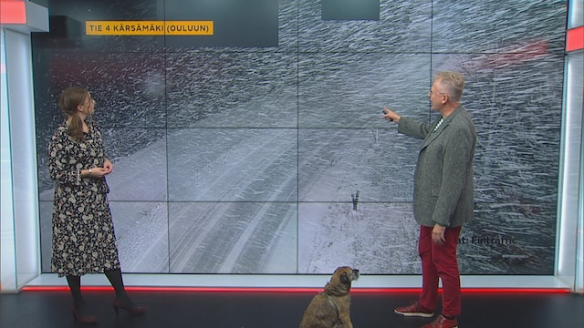 Uutisaamu, Lunta tupruttaa Lapissa! Pekka Pouta kertoo, miltä ajokeli on näyttänyt ympäri Suomea
