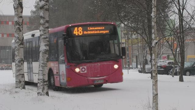 MTV Uutiset Live, Pohjoisessa pyryttää sakeana lunta! Tältä näyttää Oulussa